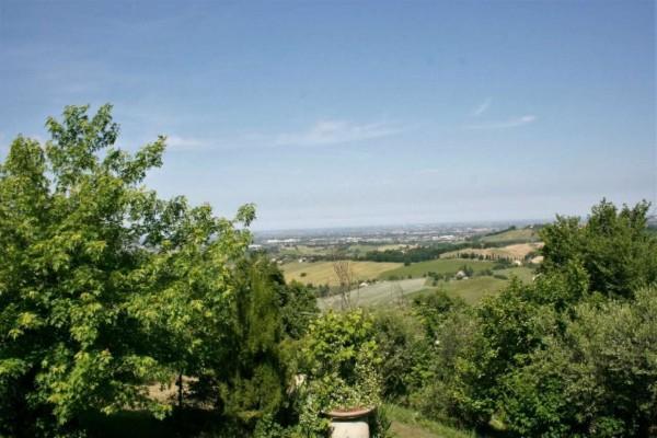 Casa indipendente in vendita a Bertinoro, Con giardino, 430 mq - Foto 26