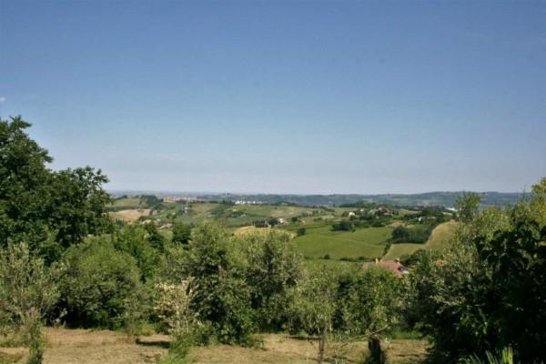 Casa indipendente in vendita a Bertinoro, Con giardino, 430 mq - Foto 2