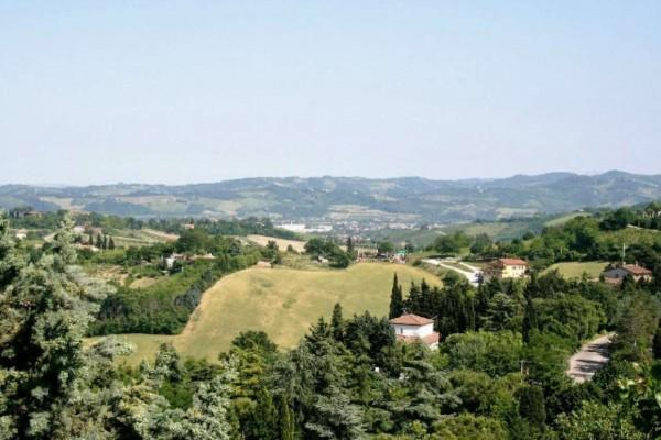 Casa indipendente in vendita a Bertinoro, Con giardino, 430 mq - Foto 10