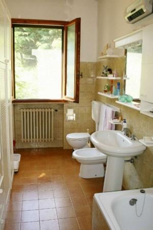 Casa indipendente in vendita a Bertinoro, Con giardino, 430 mq - Foto 18