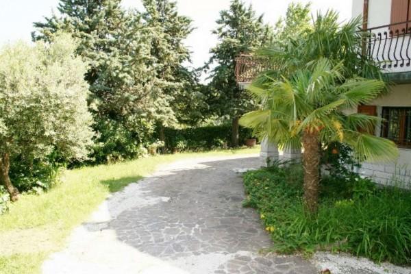 Casa indipendente in vendita a Bertinoro, Con giardino, 430 mq - Foto 4