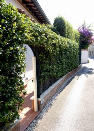 Villa in vendita a Forte dei Marmi, Centro, Arredato, con giardino, 180 mq