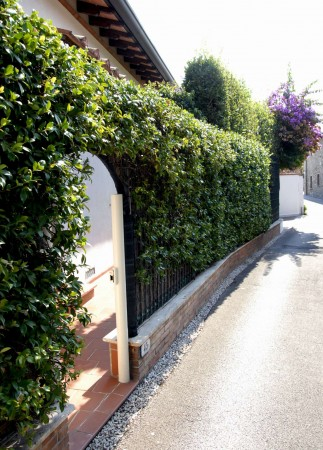 Villa in vendita a Forte dei Marmi, Centro, Arredato, con giardino, 180 mq - Foto 17