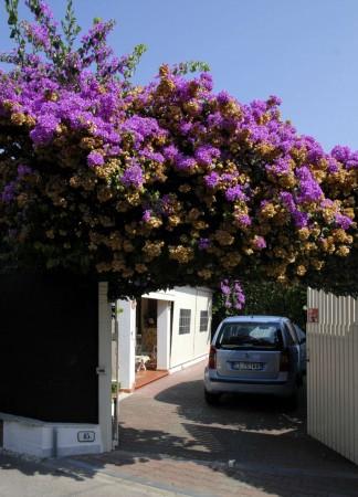Villa in vendita a Forte dei Marmi, Centro, Arredato, con giardino, 180 mq - Foto 6