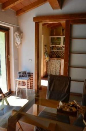 Appartamento in vendita a Ameglia, Arredato, con giardino, 65 mq - Foto 8