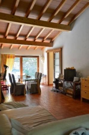 Appartamento in vendita a Ameglia, Arredato, con giardino, 65 mq - Foto 7