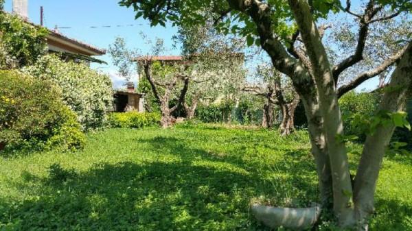 Casa indipendente in vendita a Ameglia, Con giardino, 120 mq - Foto 11
