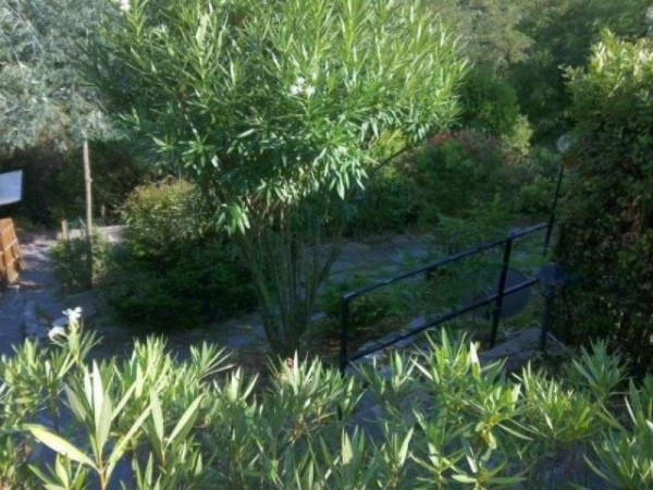 Appartamento in vendita a Ameglia, Arredato, con giardino, 100 mq - Foto 6