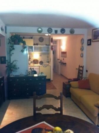 Appartamento in vendita a Ameglia, Piano Di Ameglia, Arredato, con giardino, 50 mq