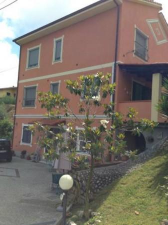 Casa indipendente in vendita a Arcola, Con giardino, 270 mq - Foto 3