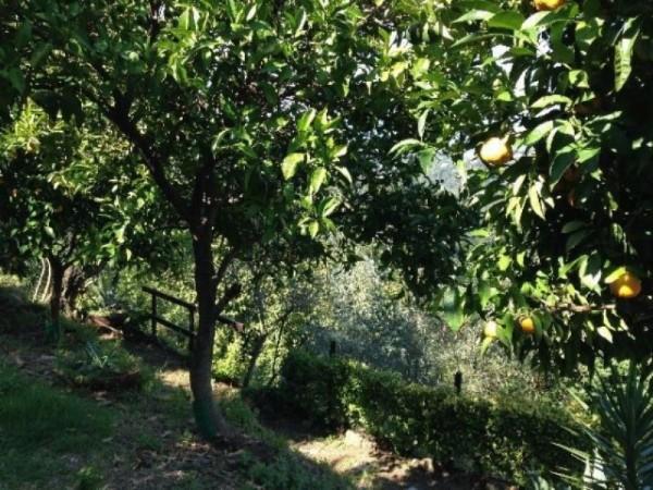 Villa in vendita a Arcola, Con giardino, 150 mq - Foto 3