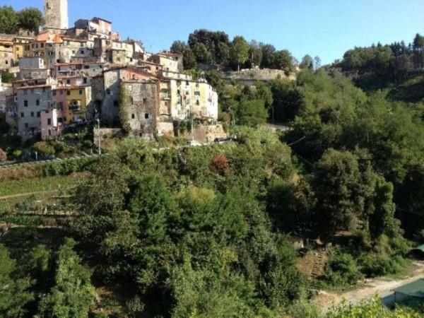 Casa indipendente in vendita a Arcola, Con giardino, 170 mq - Foto 7