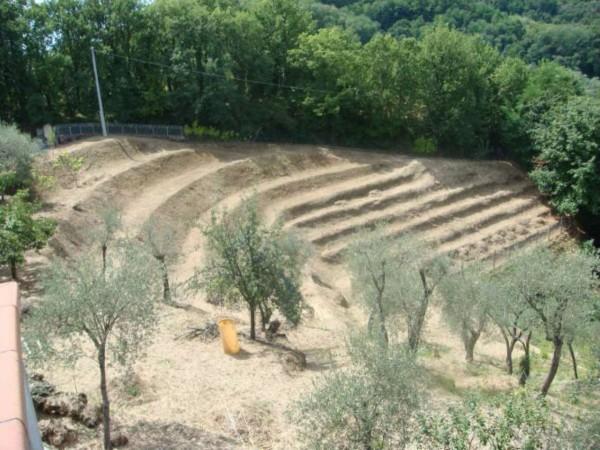 Casa indipendente in vendita a Arcola, Romito Magra, Con giardino, 120 mq - Foto 14