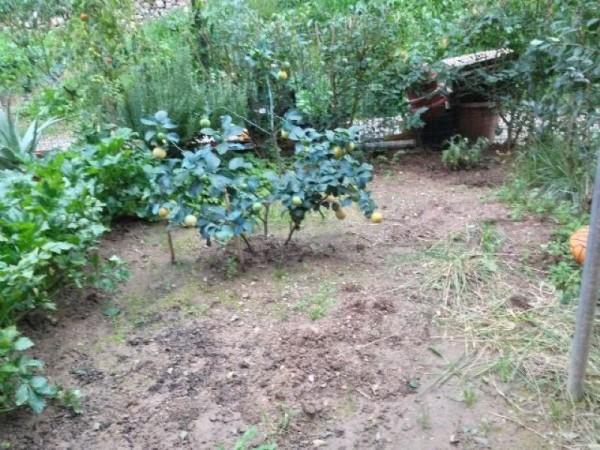 Appartamento in vendita a Arcola, Romito Magra, Con giardino, 70 mq - Foto 7