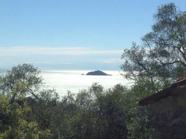 Rustico/Casale in vendita a Lerici, Zanego, Con giardino, 30 mq