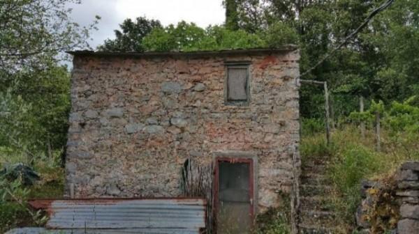 Rustico/Casale in vendita a Lerici, Monti San Lorenzo, Con giardino - Foto 2