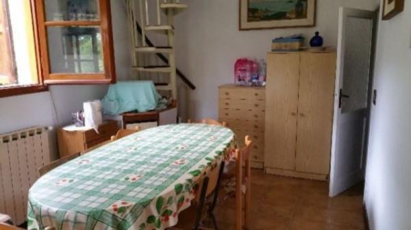 Rustico/Casale in vendita a Lerici, Monti San Lorenzo, Con giardino - Foto 4
