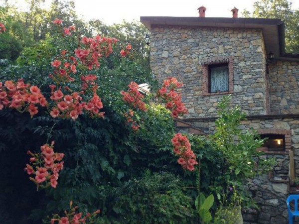Casa indipendente in vendita a Lerici, Con giardino, 70 mq - Foto 2