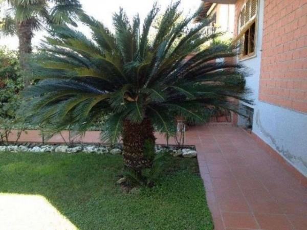 Casa indipendente in vendita a Ortonovo, Con giardino, 110 mq - Foto 4