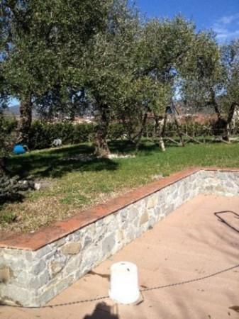 Villa in vendita a Sarzana, Con giardino, 180 mq - Foto 7