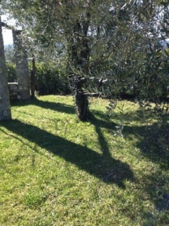 Villa in vendita a Sarzana, Con giardino, 180 mq - Foto 8