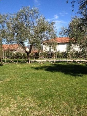 Villa in vendita a Sarzana, Con giardino, 180 mq - Foto 4