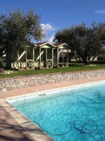 Villa in vendita a Sarzana, Con giardino, 180 mq - Foto 6