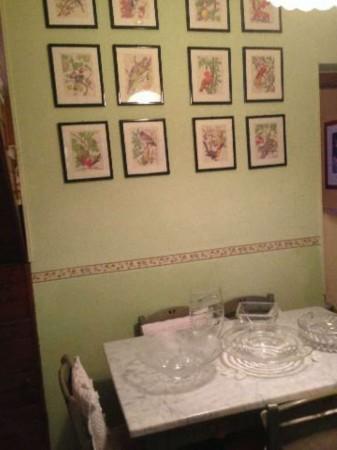 Casa indipendente in vendita a Sarzana, Con giardino, 70 mq - Foto 5