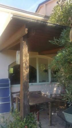 Appartamento in vendita a Sarzana, Falcinello, Con giardino - Foto 3