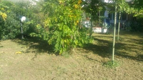 Appartamento in vendita a Sarzana, Falcinello, Con giardino - Foto 2