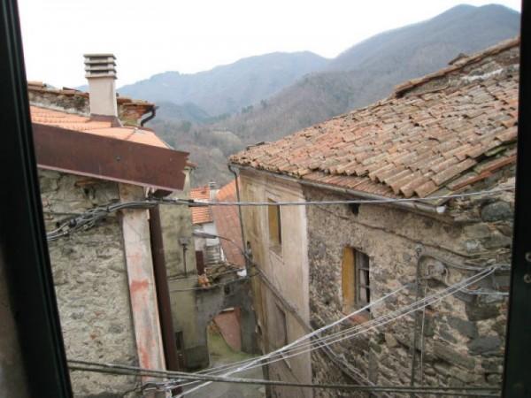 Appartamento in vendita a Aulla, Vecchietto, Con giardino, 100 mq - Foto 1