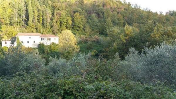 Casa indipendente in vendita a Licciana Nardi, Con giardino, 200 mq - Foto 11