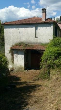 Casa indipendente in vendita a Licciana Nardi, Con giardino, 200 mq - Foto 8
