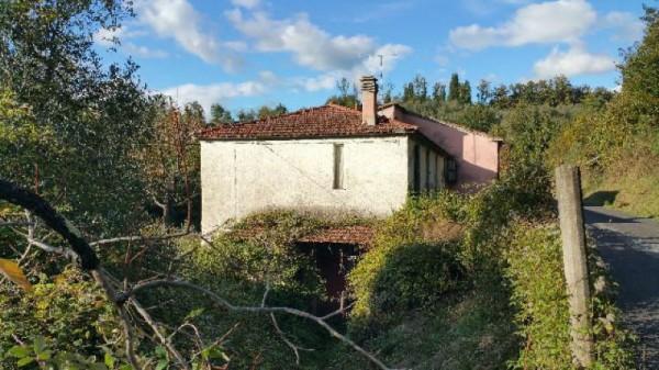 Casa indipendente in vendita a Licciana Nardi, Con giardino, 200 mq - Foto 5