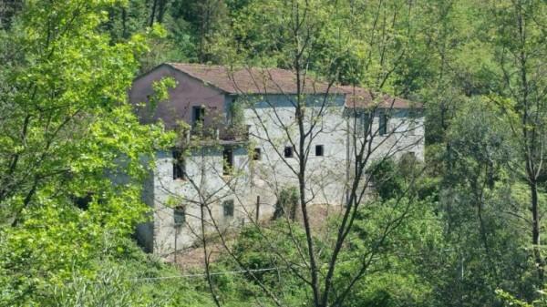 Casa indipendente in vendita a Licciana Nardi, Con giardino, 200 mq - Foto 9