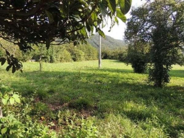Casa indipendente in vendita a Pontremoli, Con giardino, 300 mq - Foto 5