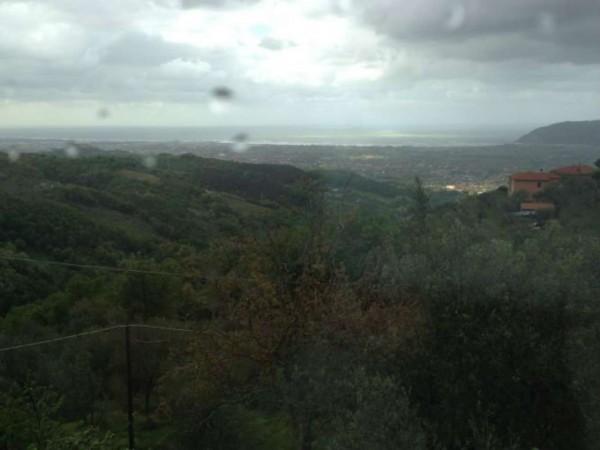 Rustico/Casale in vendita a Castelnuovo Magra, Vallecchia, Con giardino, 300 mq - Foto 1