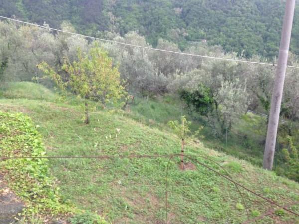 Rustico/Casale in vendita a Castelnuovo Magra, Vallecchia, Con giardino, 300 mq - Foto 4