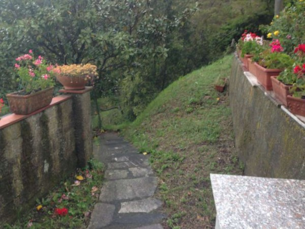Rustico/Casale in vendita a Castelnuovo Magra, Vallecchia, Con giardino, 300 mq - Foto 7