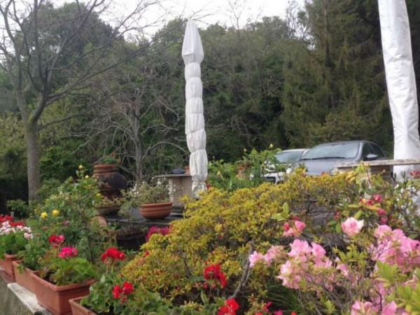 Rustico/Casale in vendita a Castelnuovo Magra, Vallecchia, Con giardino, 300 mq - Foto 6