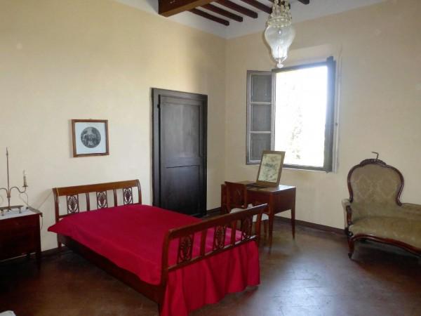 Rustico/Casale in vendita a Casciana Terme Lari, Con giardino, 1500 mq - Foto 6