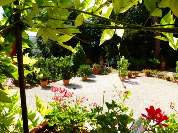Rustico/Casale in vendita a Casciana Terme Lari, Con giardino, 1500 mq - Foto 18
