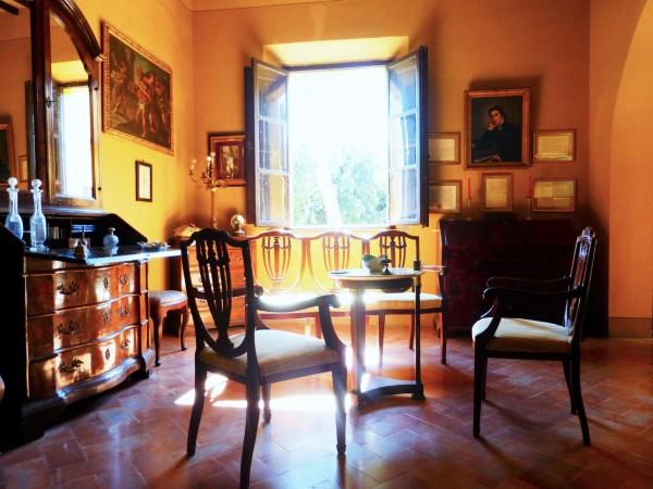 Rustico/Casale in vendita a Casciana Terme Lari, Con giardino, 1500 mq - Foto 8
