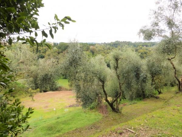Rustico/Casale in vendita a Casciana Terme Lari, Con giardino, 1500 mq - Foto 17
