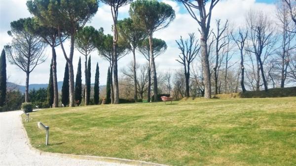 Villa in vendita a Città di Castello, Baucca, Con giardino, 150 mq