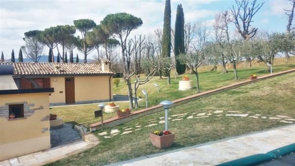 Villa in vendita a Città di Castello, Baucca, Con giardino, 200 mq