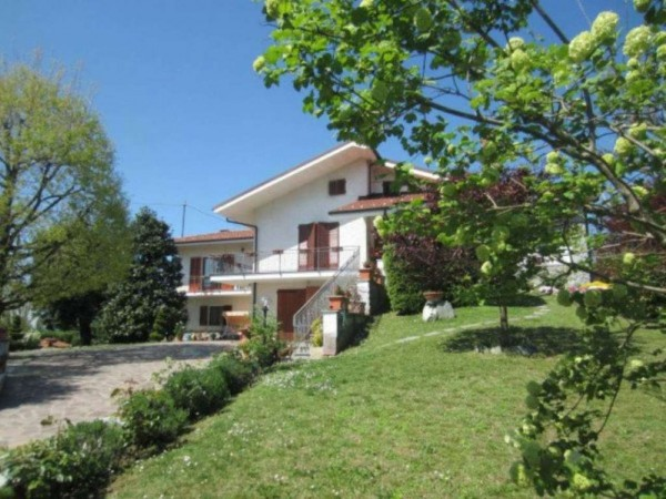 Villa in vendita a Montafia, Residenziale, Con giardino, 340 mq - Foto 17