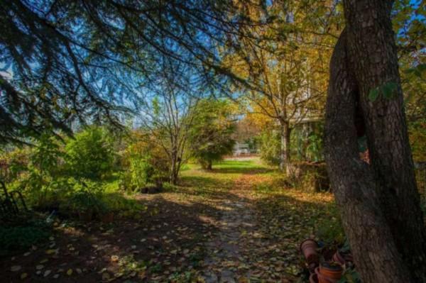 Rustico/Casale in vendita a Montemagno, Sanbaione, Con giardino, 350 mq - Foto 16