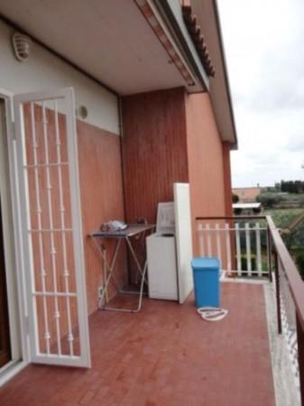 Appartamento in affitto a Ardea, Madonnina, Arredato, con giardino, 55 mq - Foto 5