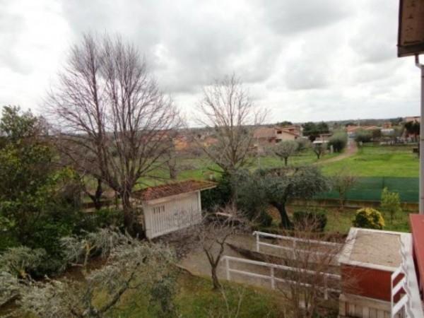 Appartamento in affitto a Ardea, Madonnina, Arredato, con giardino, 55 mq - Foto 4